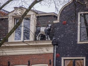 wpid-Amsterdam-2013-2091561.jpg